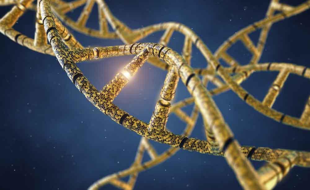 Mielodisplasie: una firma genetica predice il rischio che diventino leucemie